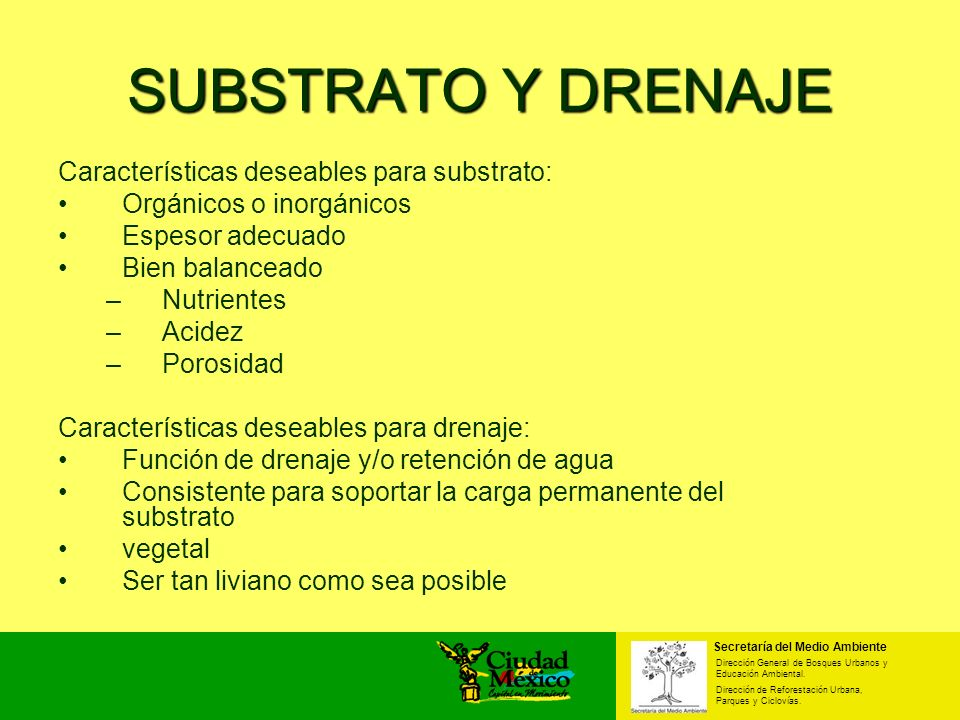 SUBSTRATO Y DRENAJE Características deseables para substrato: