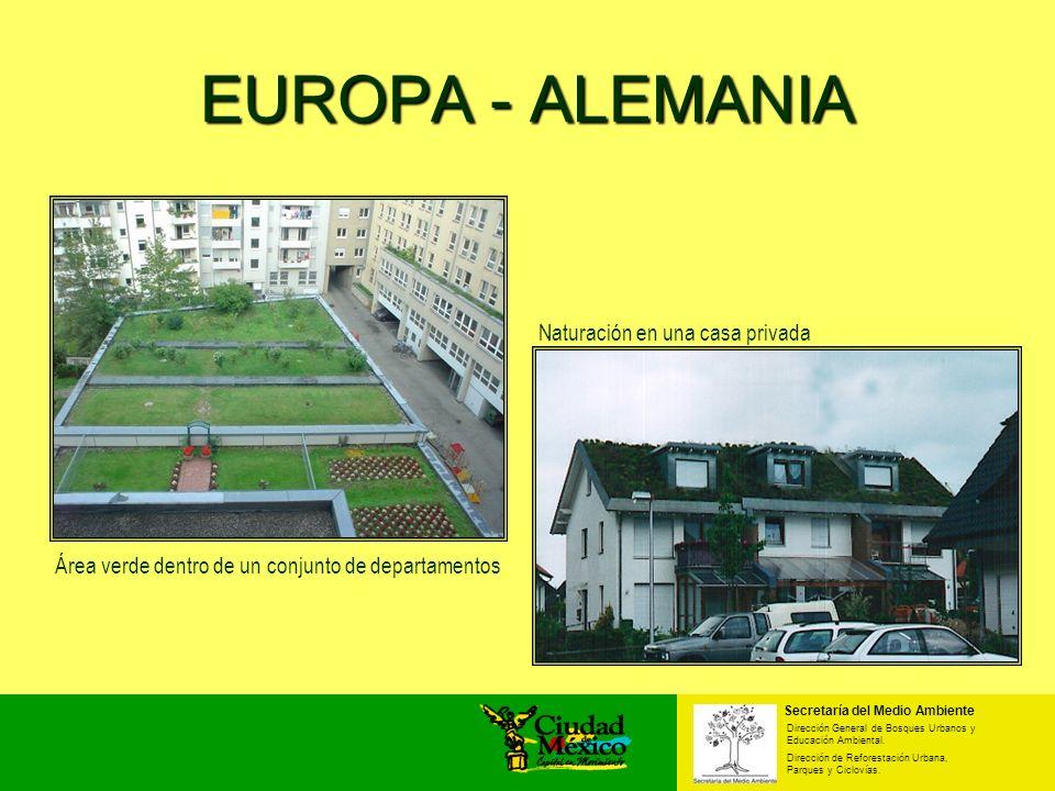 Área verde dentro de un conjunto de departamentos