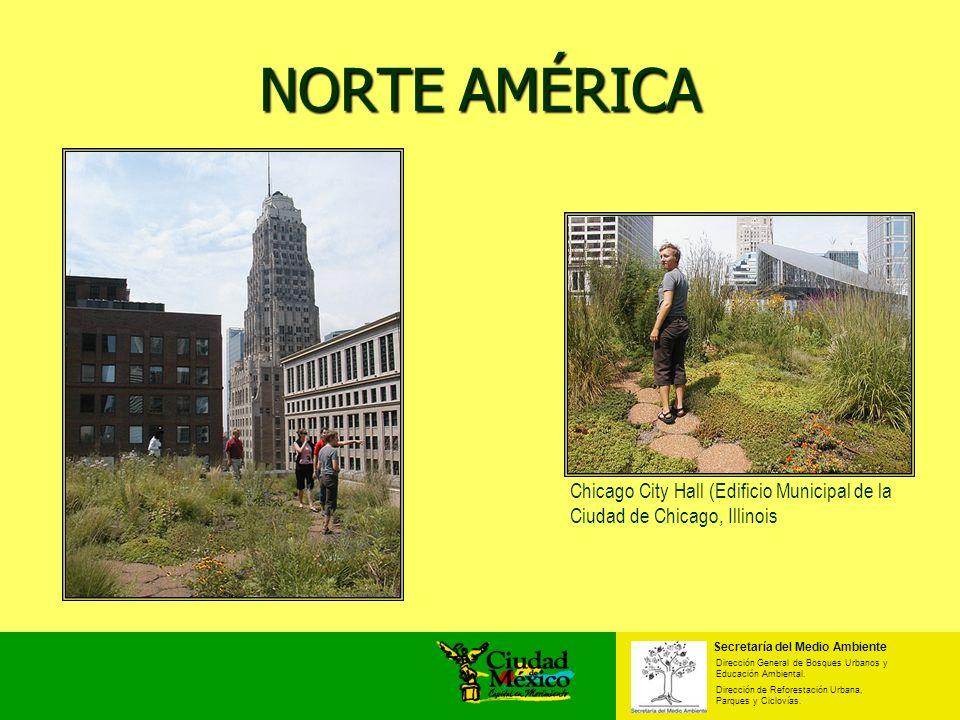 NORTE AMÉRICA Chicago City Hall (Edificio Municipal de la Ciudad de Chicago, Illinois. Secretaría del Medio Ambiente.