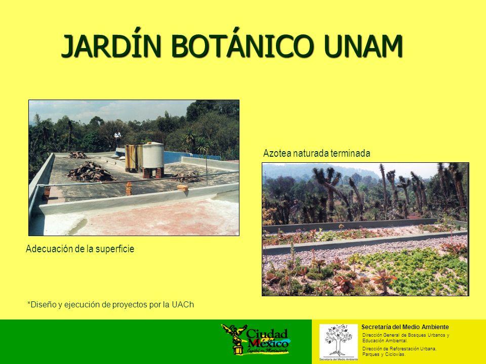 JARDÍN BOTÁNICO UNAM Azotea naturada terminada