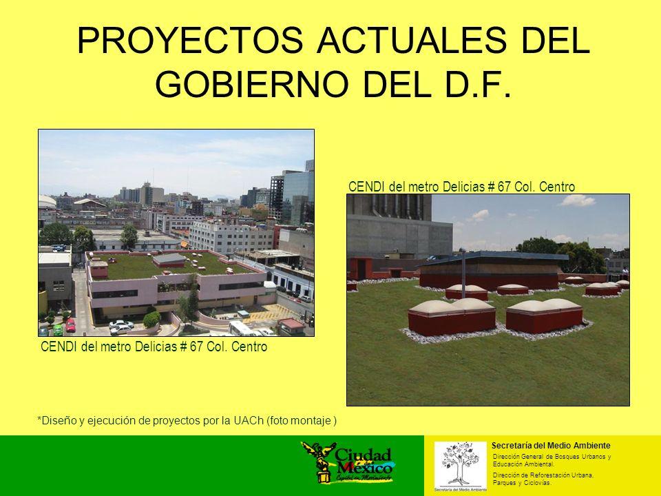 PROYECTOS ACTUALES DEL GOBIERNO DEL D.F.