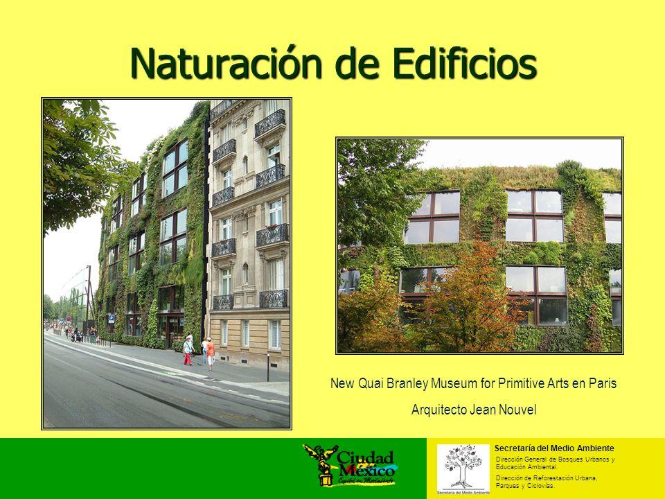 Naturación de Edificios