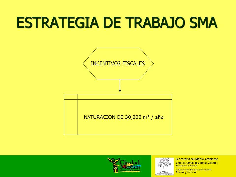 ESTRATEGIA DE TRABAJO SMA