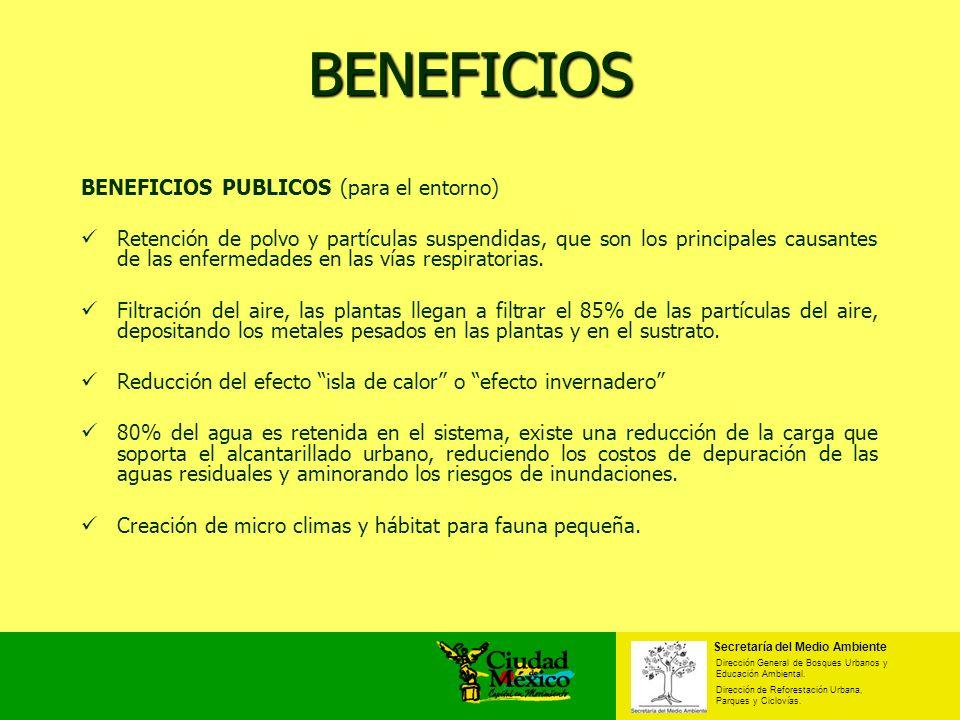 BENEFICIOS BENEFICIOS PUBLICOS (para el entorno)