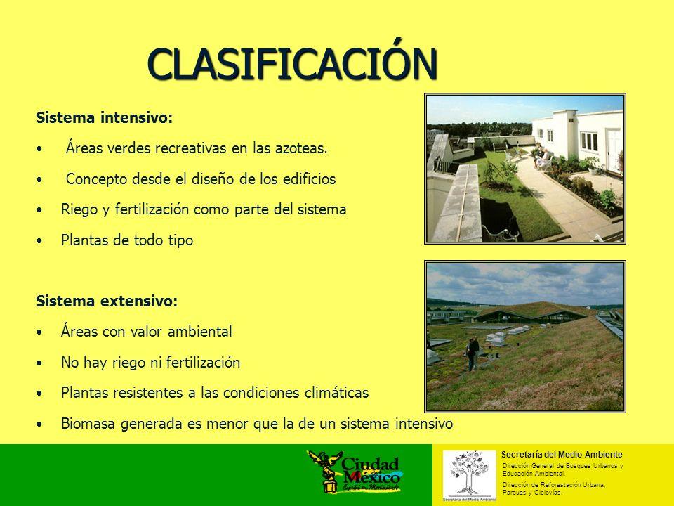 CLASIFICACIÓN Sistema intensivo:
