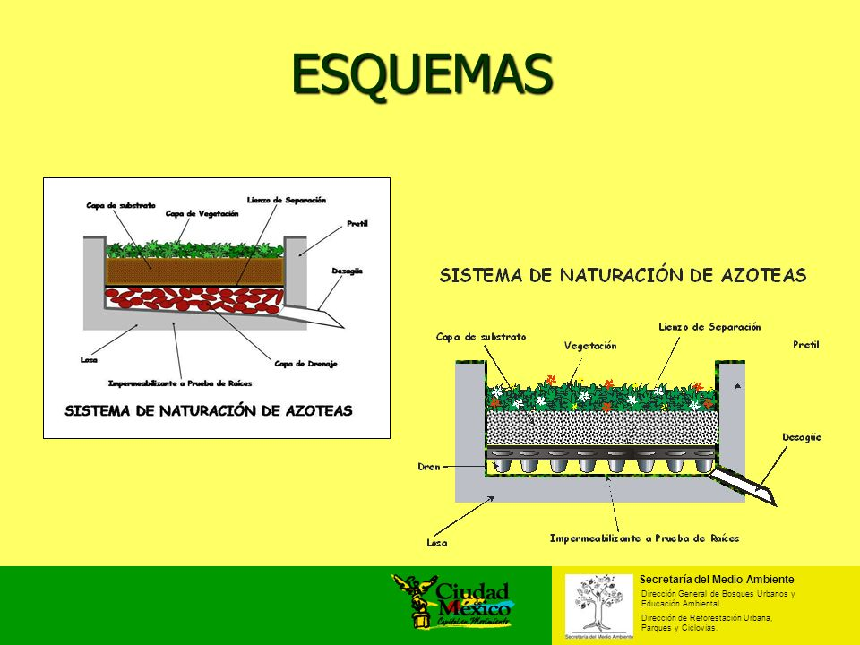 ESQUEMAS Secretaría del Medio Ambiente