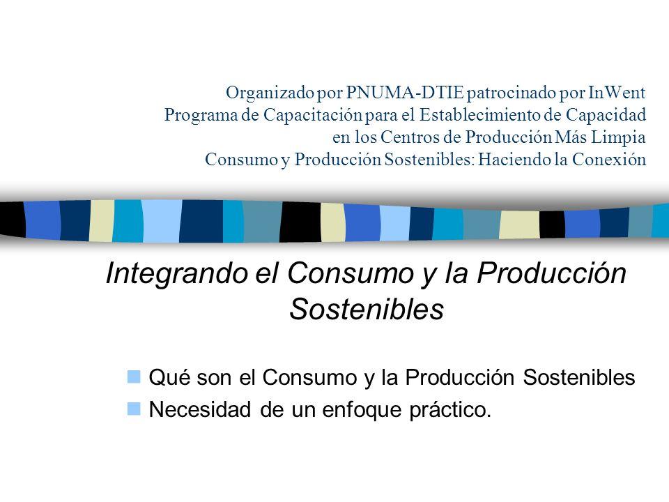 Integrando el Consumo y la Producción Sostenibles