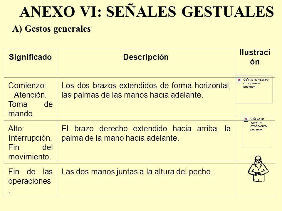 ANEXO VI: SEÑALES GESTUALES