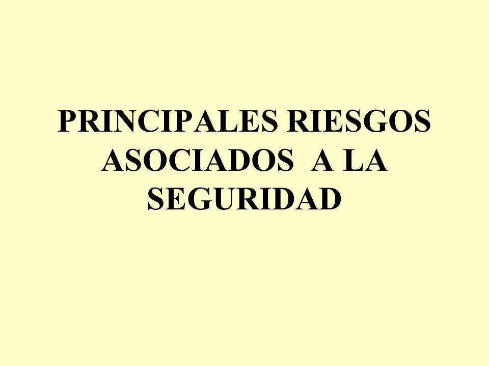 PRINCIPALES RIESGOS ASOCIADOS A LA SEGURIDAD