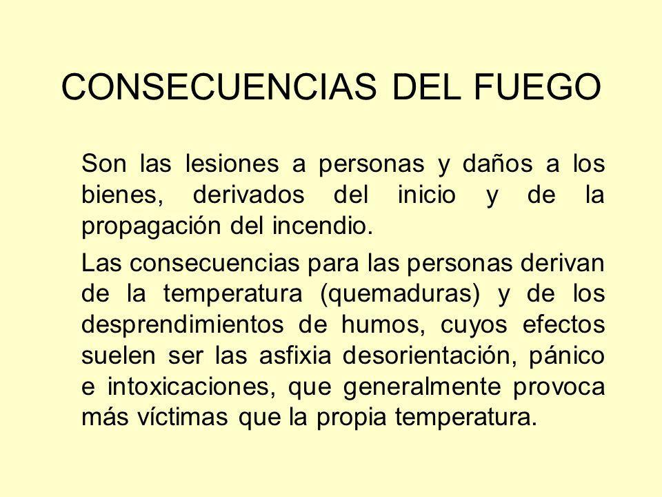 CONSECUENCIAS DEL FUEGO