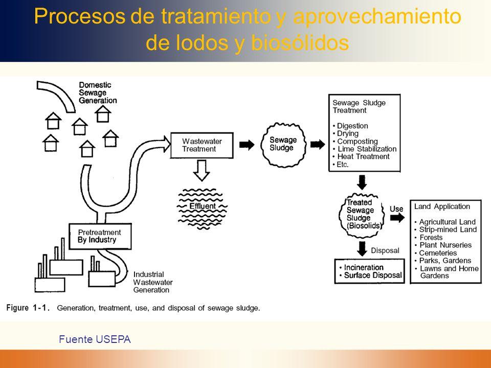 Procesos de tratamiento y aprovechamiento de lodos y biosólidos
