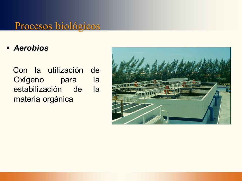 Procesos biológicos Aerobios