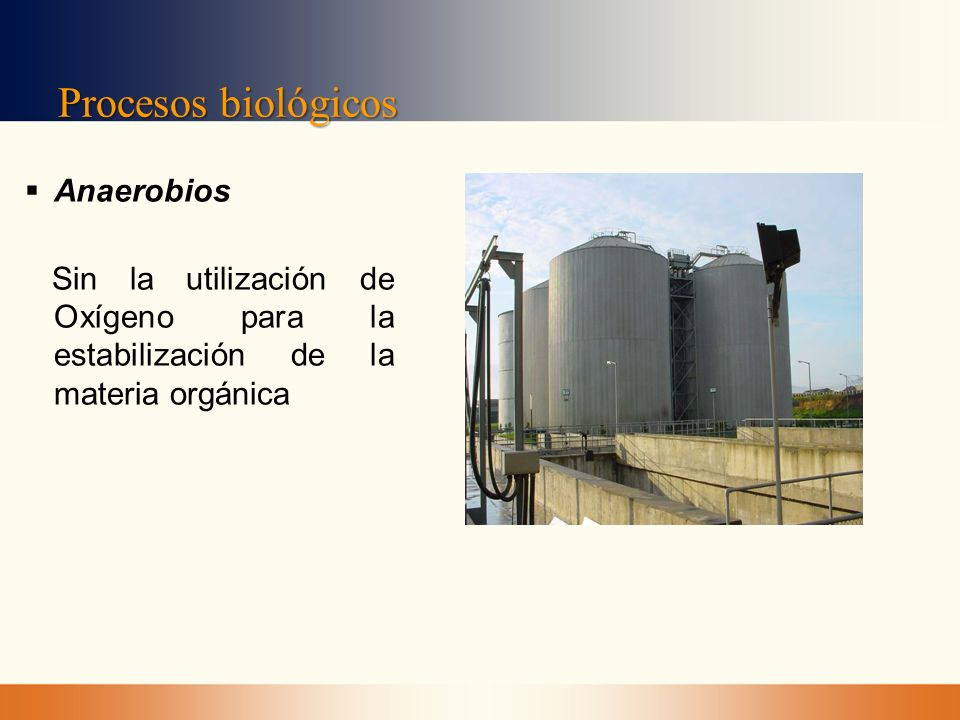 Procesos biológicos Anaerobios