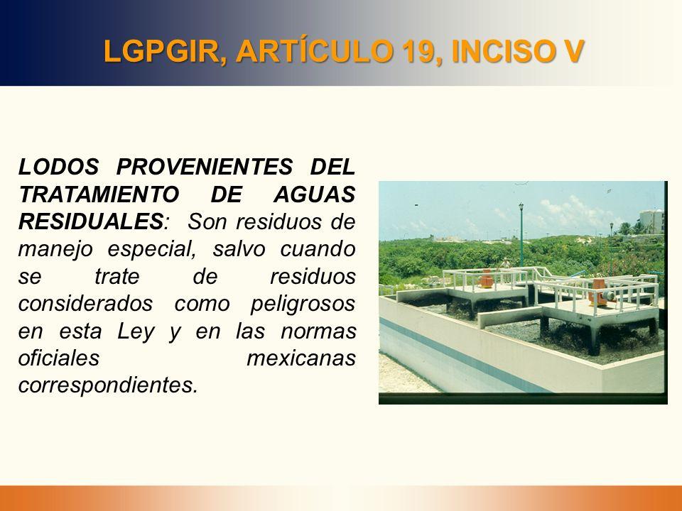 LGPGIR, ARTÍCULO 19, INCISO V