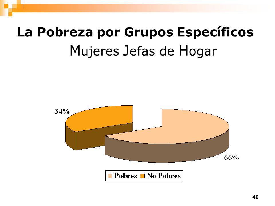 La Pobreza por Grupos Específicos
