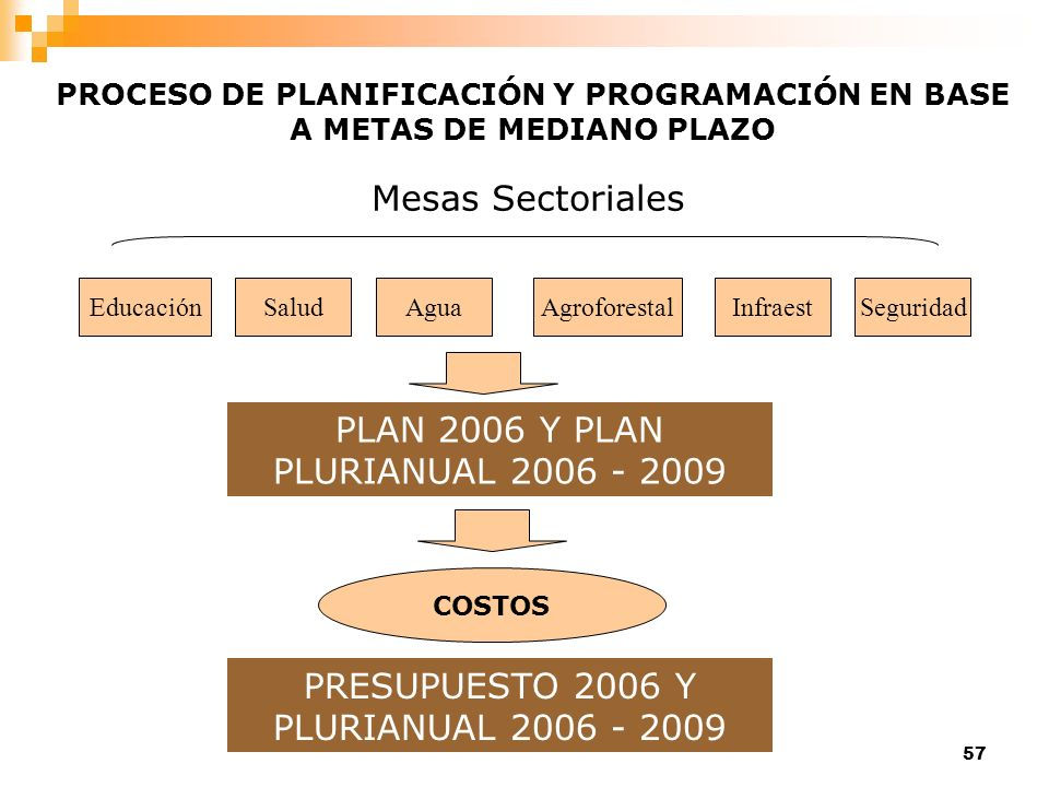 PLAN 2006 Y PLAN PLURIANUAL 2006 - 2009