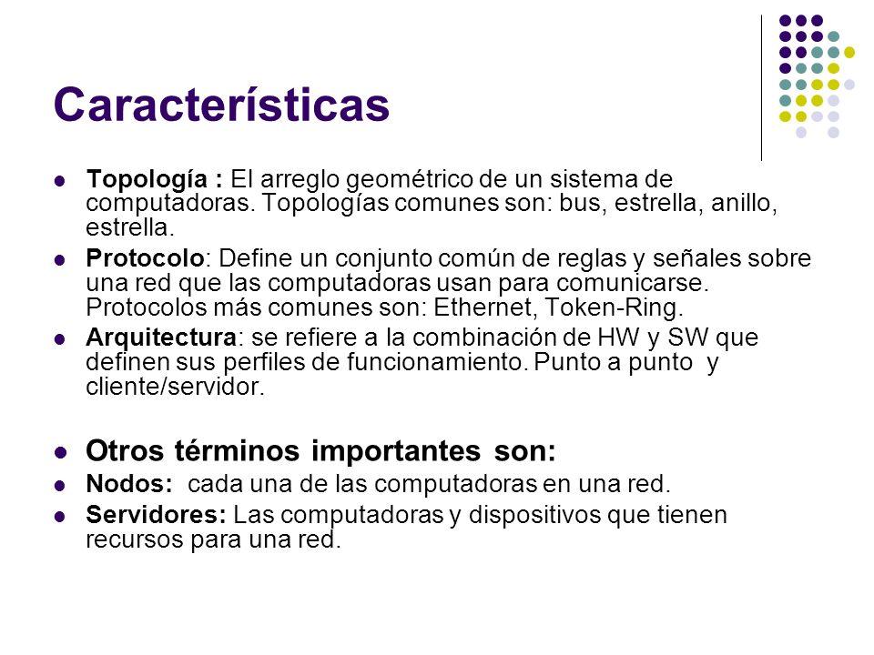 Características Otros términos importantes son: