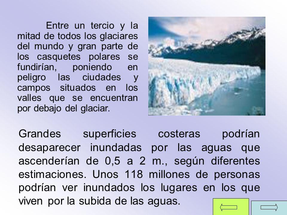 Entre un tercio y la mitad de todos los glaciares del mundo y gran parte de los casquetes polares se fundirían, poniendo en peligro las ciudades y campos situados en los valles que se encuentran por debajo del glaciar.