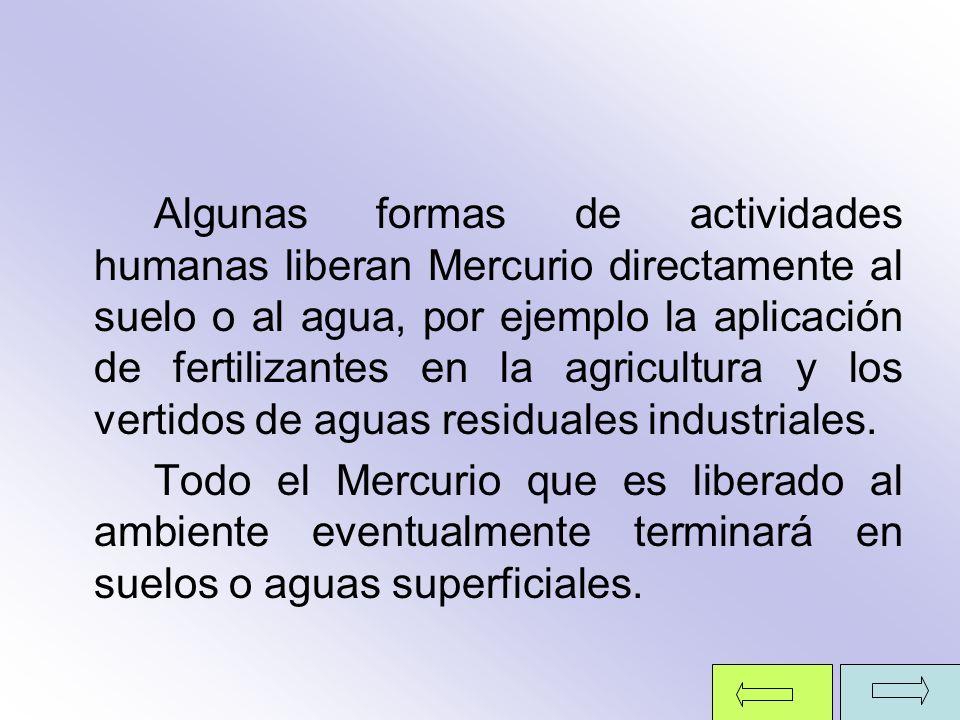Algunas formas de actividades humanas liberan Mercurio directamente al suelo o al agua, por ejemplo la aplicación de fertilizantes en la agricultura y los vertidos de aguas residuales industriales.