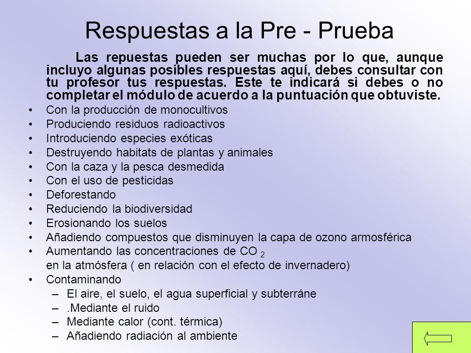 Respuestas a la Pre - Prueba
