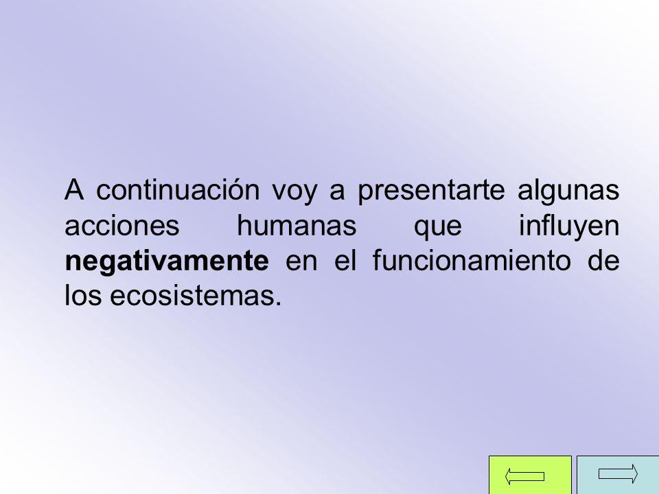 A continuación voy a presentarte algunas acciones humanas que influyen negativamente en el funcionamiento de los ecosistemas.