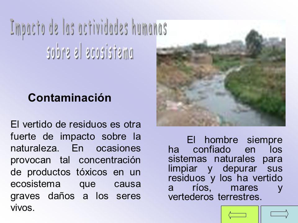 Impacto de las actividades humanas