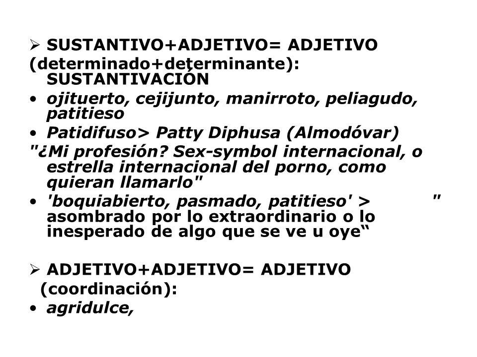 SUSTANTIVO+ADJETIVO= ADJETIVO