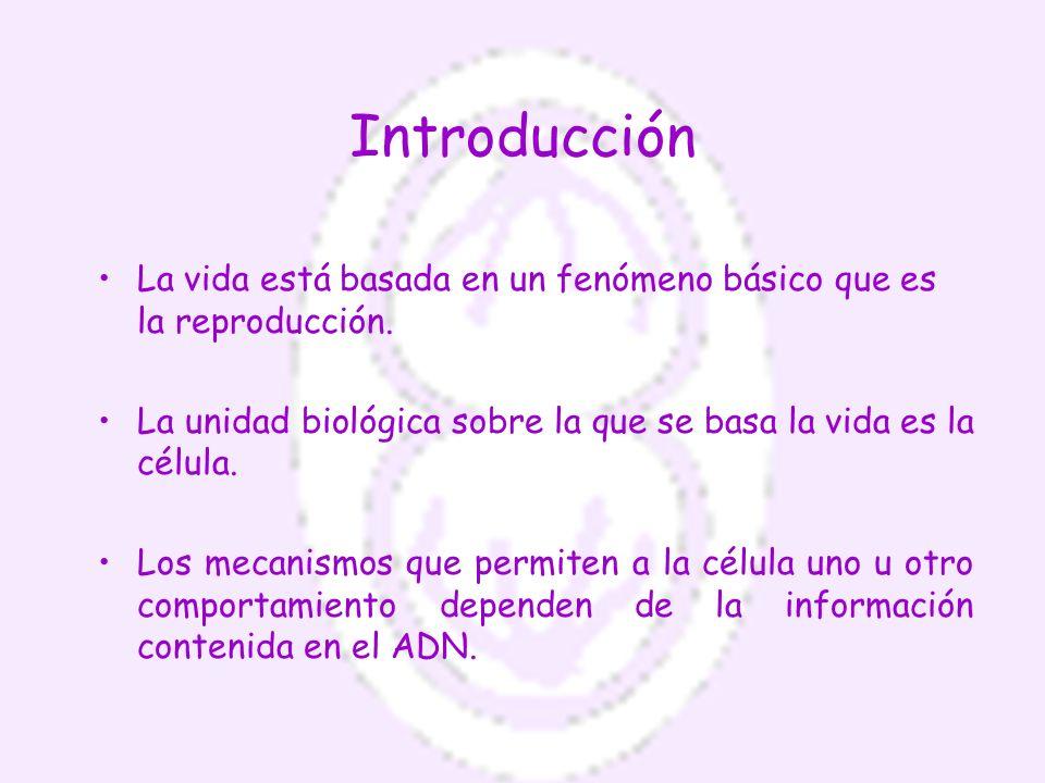 Introducción La vida está basada en un fenómeno básico que es la reproducción. La unidad biológica sobre la que se basa la vida es la célula.