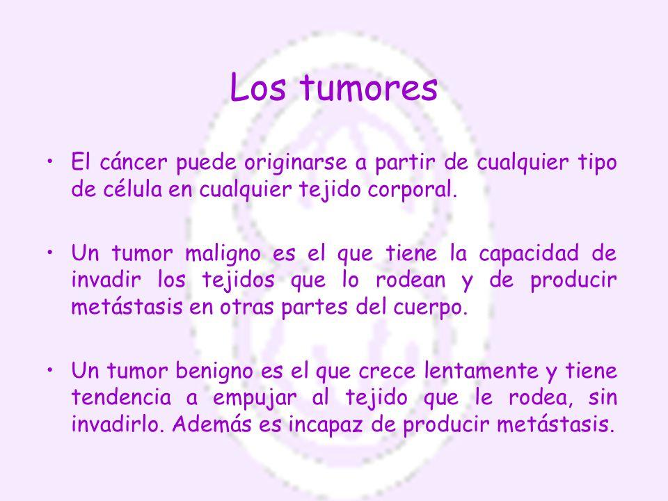 Los tumores El cáncer puede originarse a partir de cualquier tipo de célula en cualquier tejido corporal.