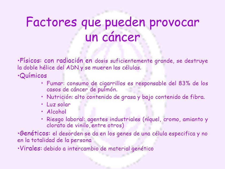Factores que pueden provocar un cáncer