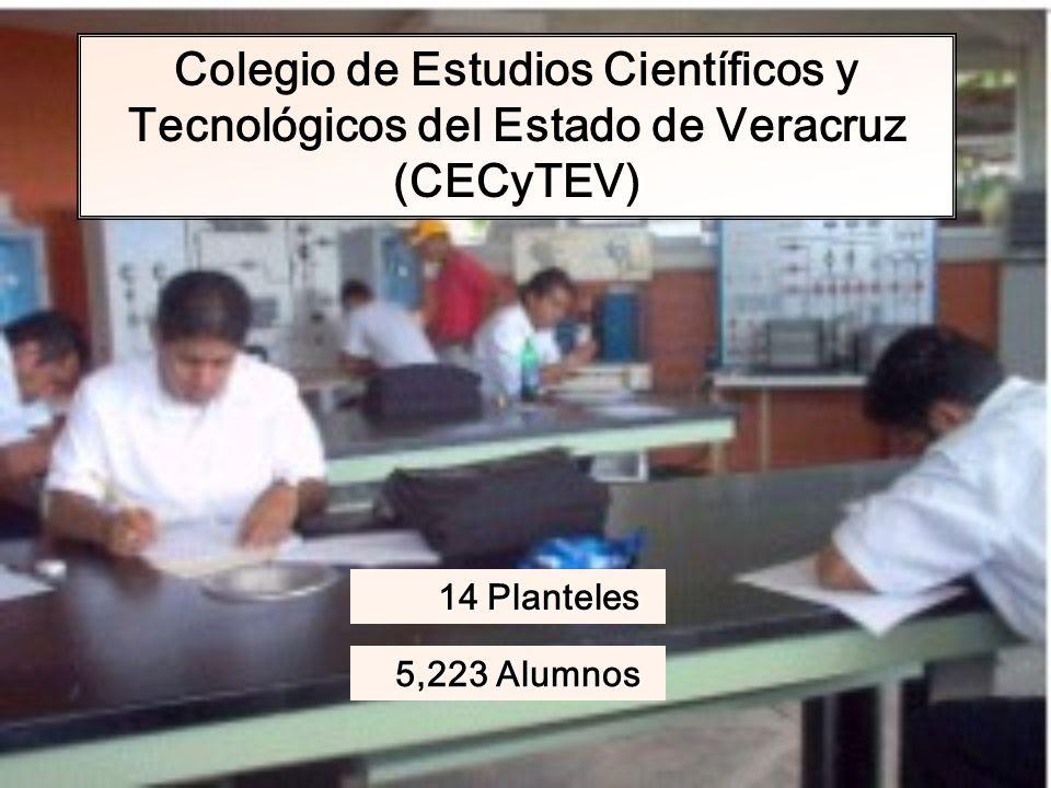 Colegio de Estudios Científicos y Tecnológicos del Estado de Veracruz (CECyTEV)