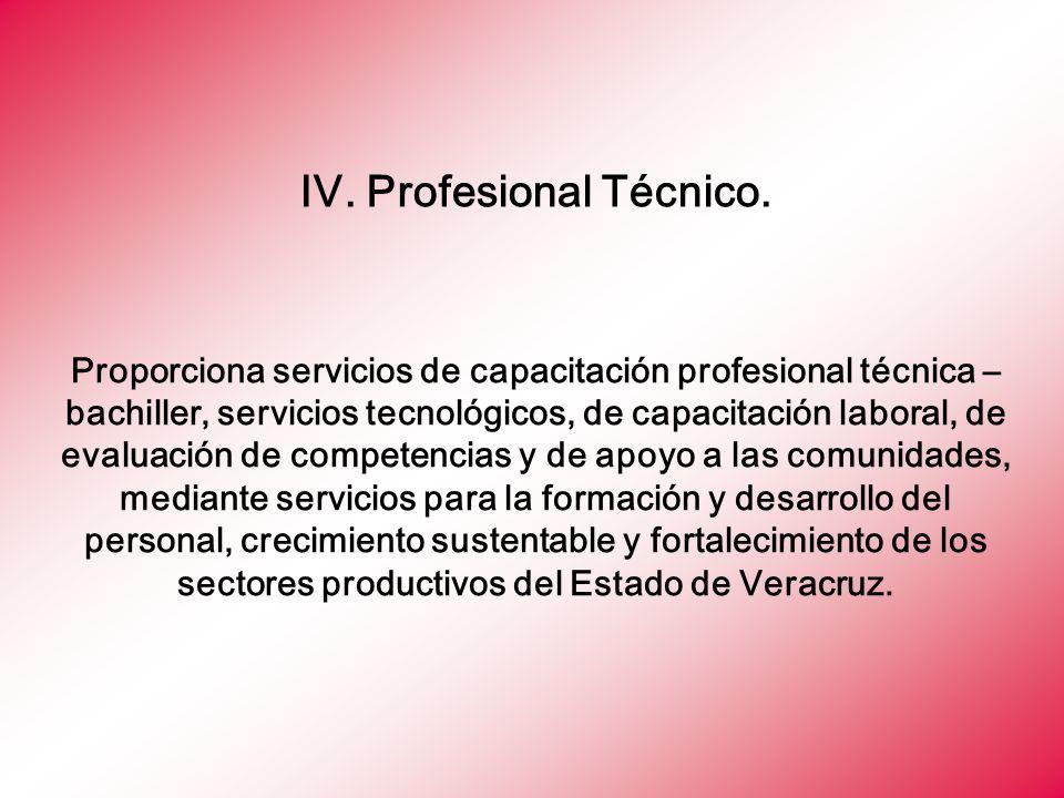IV. Profesional Técnico.