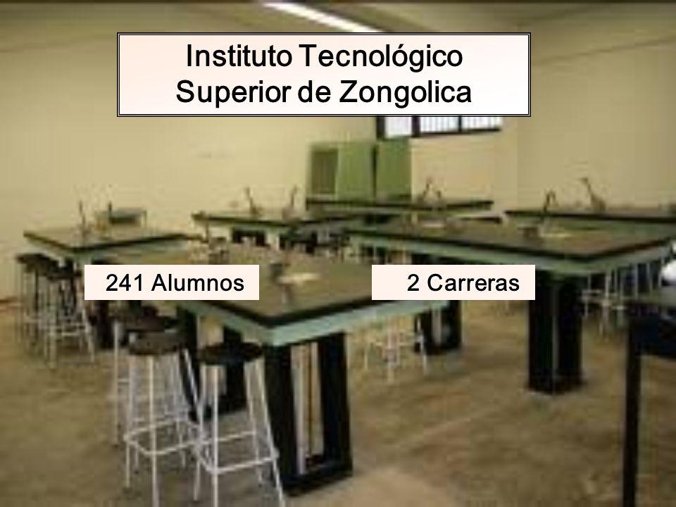 Instituto Tecnológico Superior de Zongolica