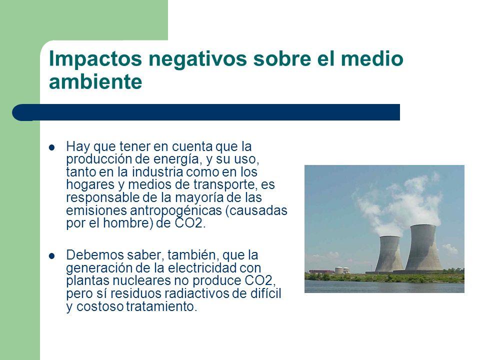 Impactos negativos sobre el medio ambiente