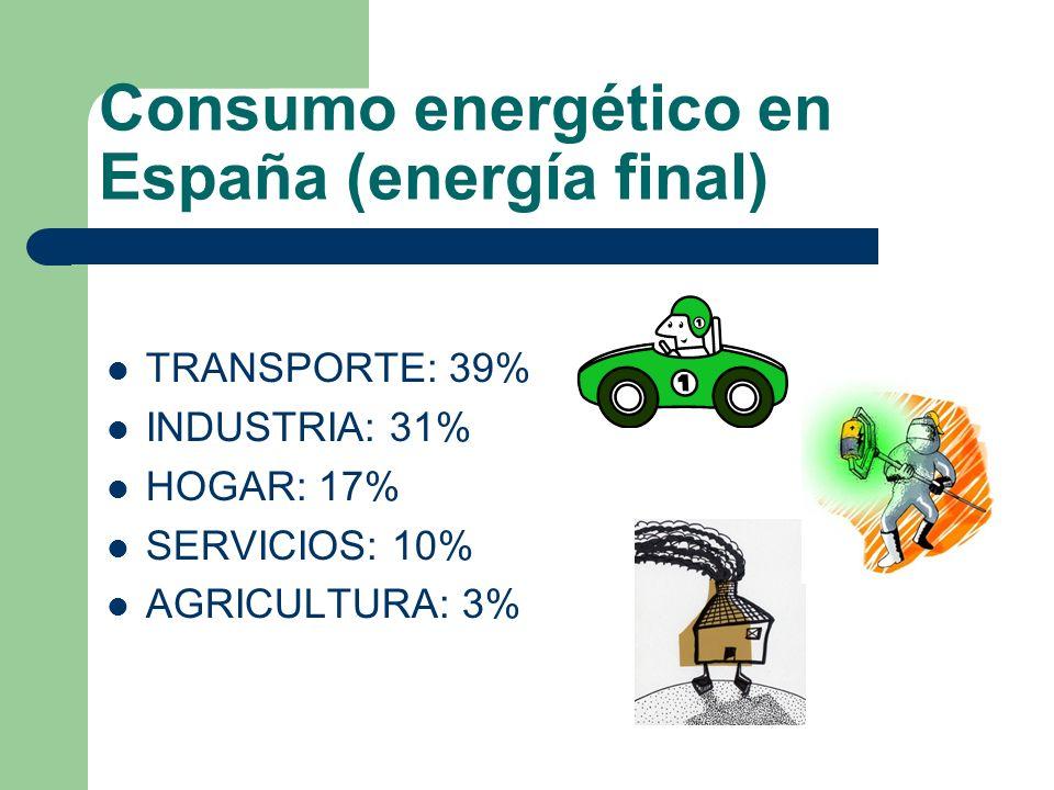 Consumo energético en España (energía final)