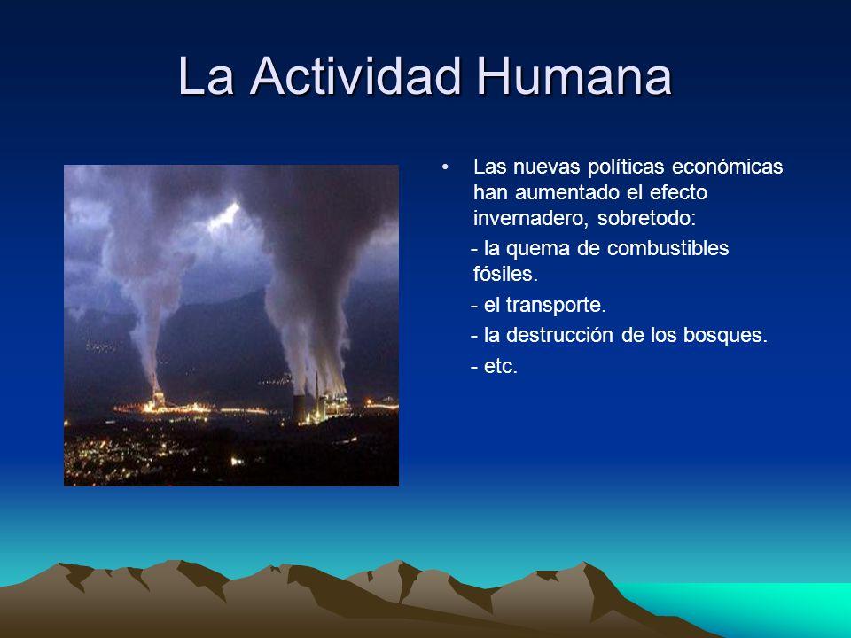 La Actividad Humana Las nuevas políticas económicas han aumentado el efecto invernadero, sobretodo: