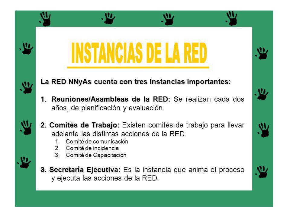 INSTANCIAS DE LA RED La RED NNyAs cuenta con tres instancias importantes: