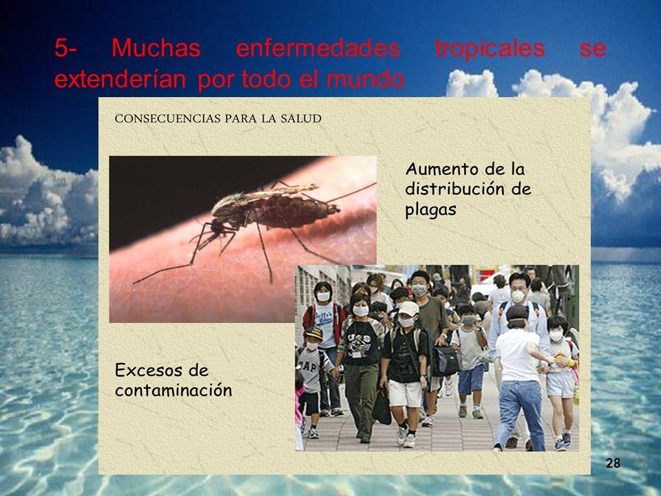 5- Muchas enfermedades tropicales se extenderían por todo el mundo.
