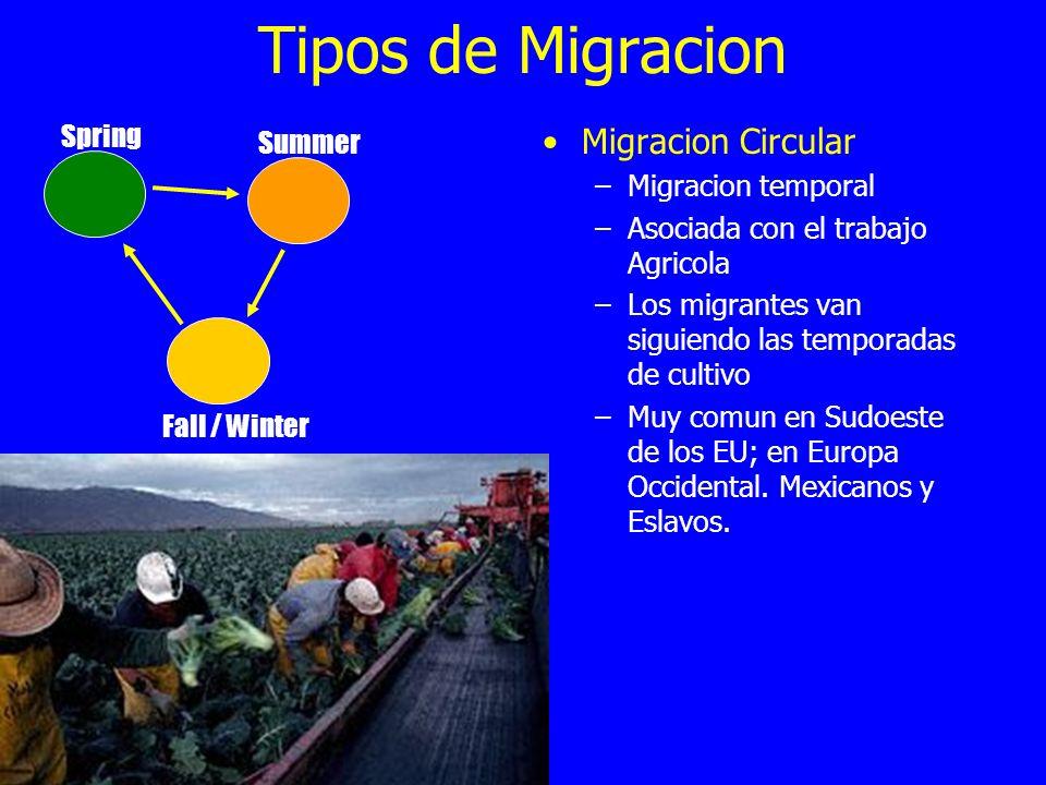 Tipos de Migracion Migracion Circular Spring Summer Migracion temporal