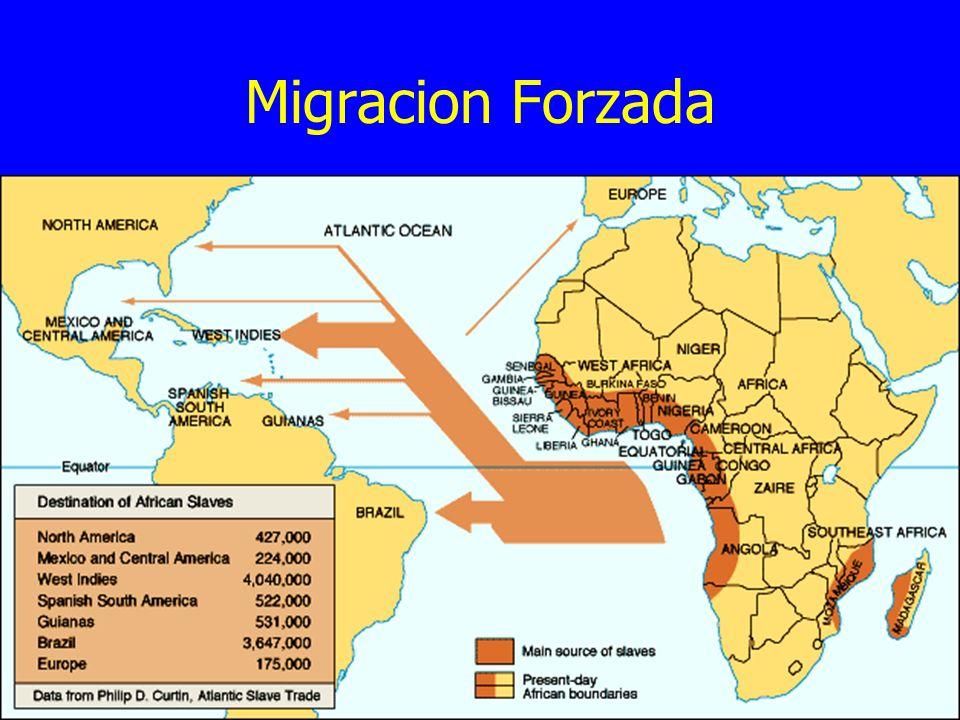 Migracion Forzada