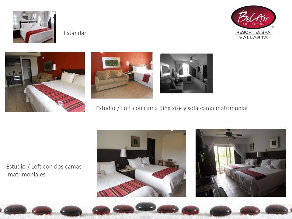 Estándar Estudio / Loft con cama King size y sofá cama matrimonial.