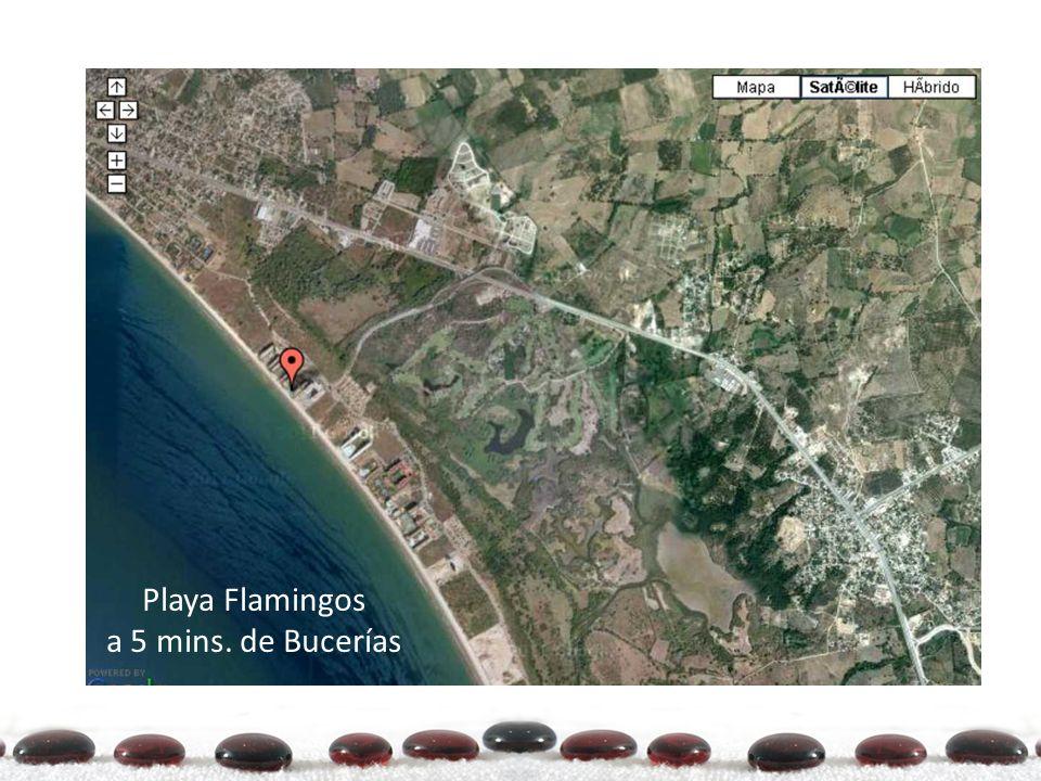Playa Flamingos a 5 mins. de Bucerías