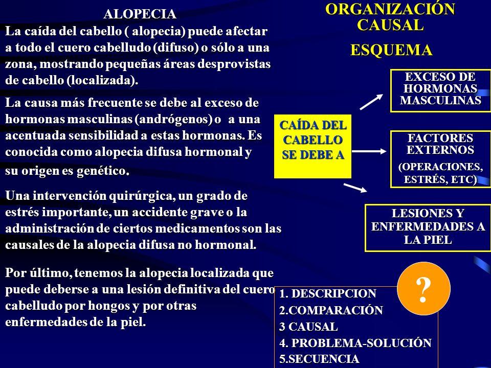 ALOPECIA ORGANIZACIÓN CAUSAL ESQUEMA