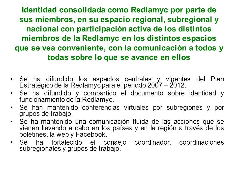 Identidad consolidada como Redlamyc por parte de sus miembros, en su espacio regional, subregional y nacional con participación activa de los distintos miembros de la Redlamyc en los distintos espacios que se vea conveniente, con la comunicación a todos y todas sobre lo que se avance en ellos