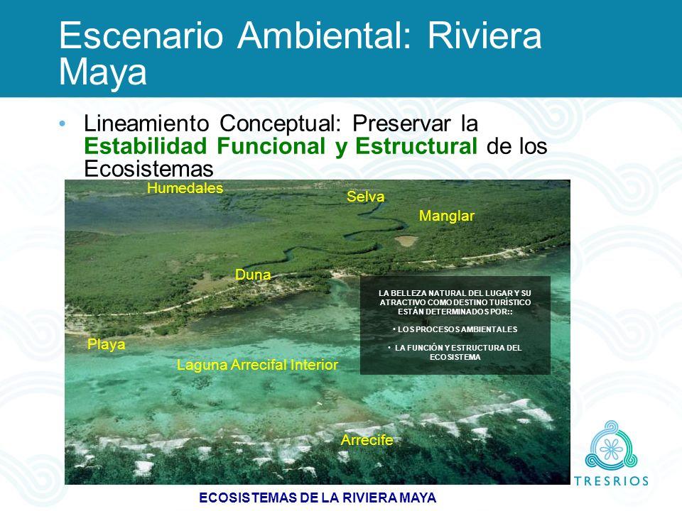 Escenario Ambiental: Riviera Maya