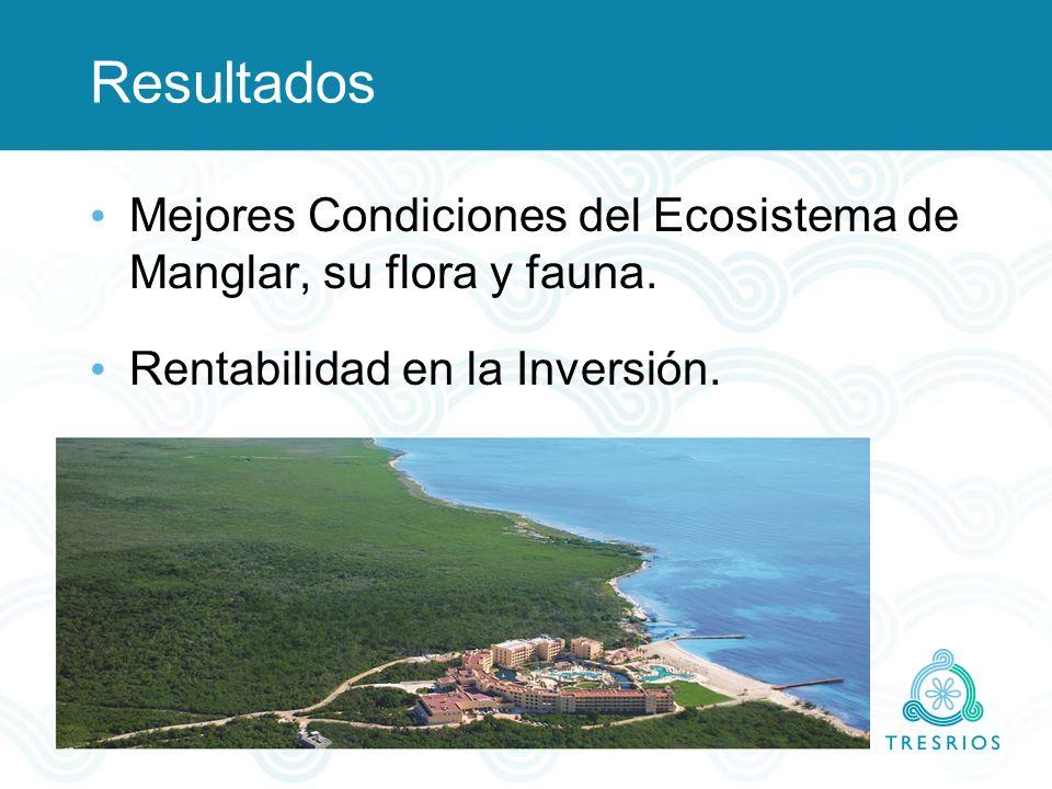 Resultados Mejores Condiciones del Ecosistema de Manglar, su flora y fauna.