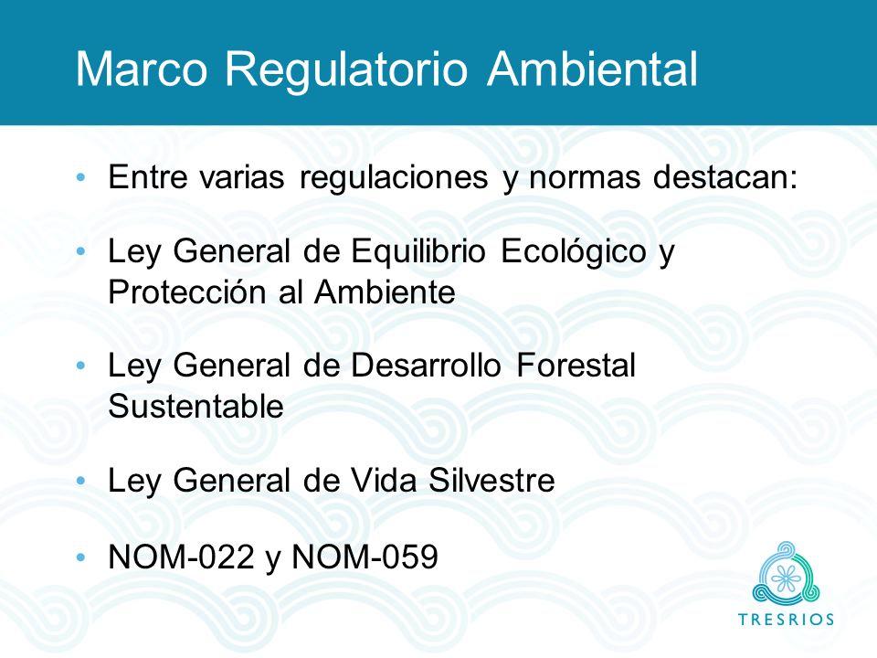 Marco Regulatorio Ambiental