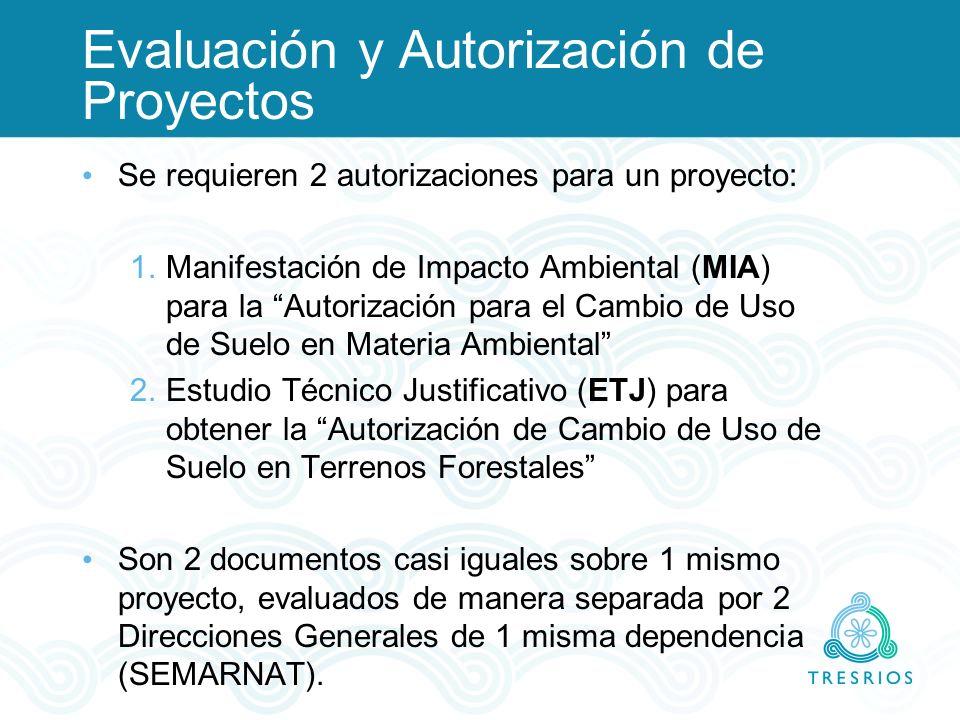 Evaluación y Autorización de Proyectos