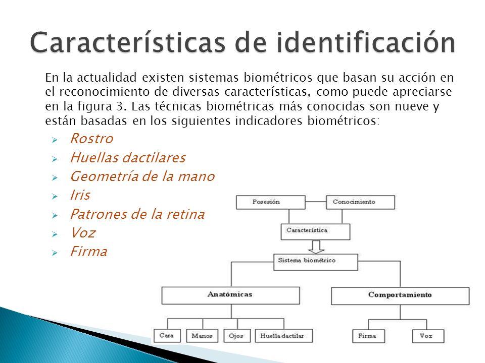 Características de identificación
