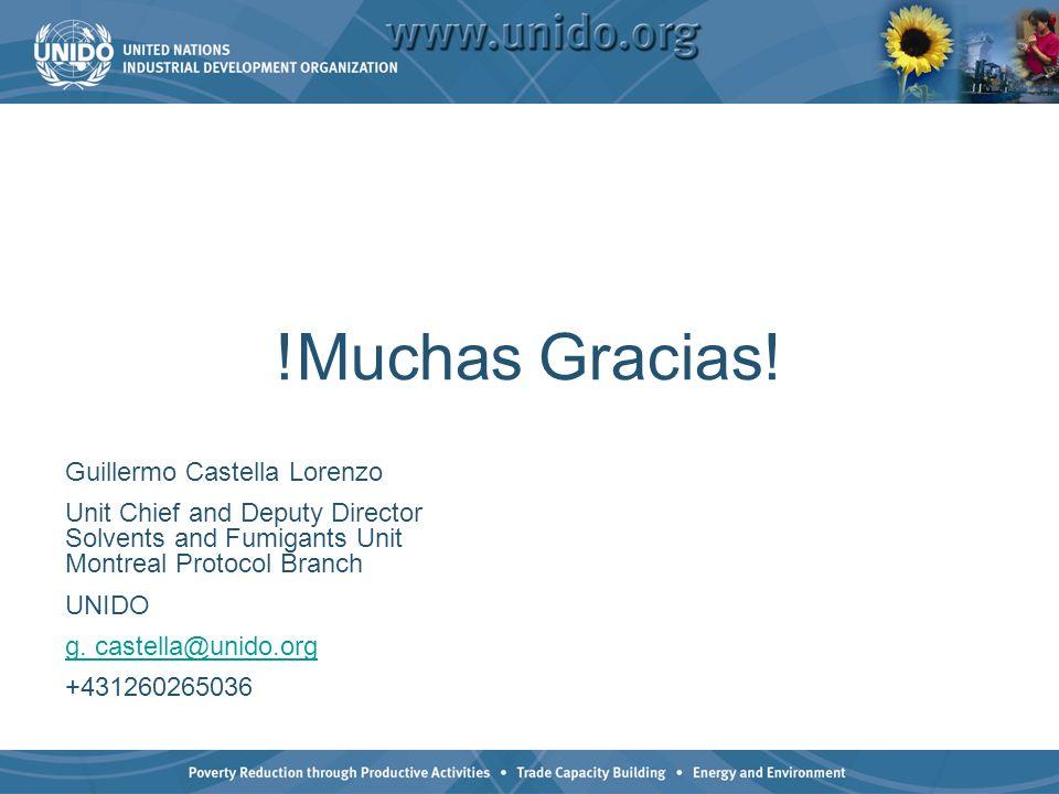 !Muchas Gracias! Guillermo Castella Lorenzo